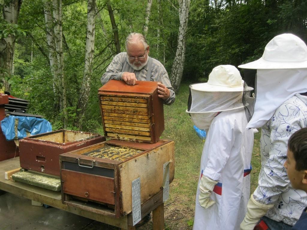 Honig schleudern beim Imker
